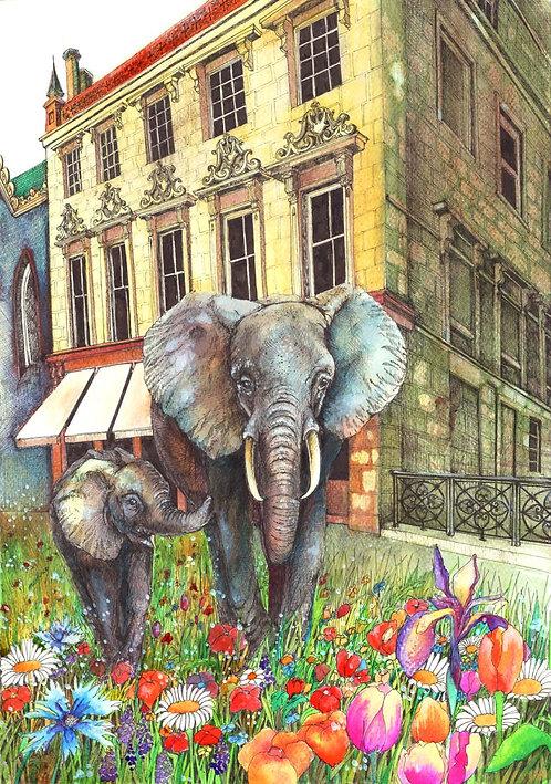 Elephant House