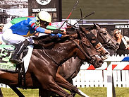 Caravel sails to nose victory in $100,000 The Very One