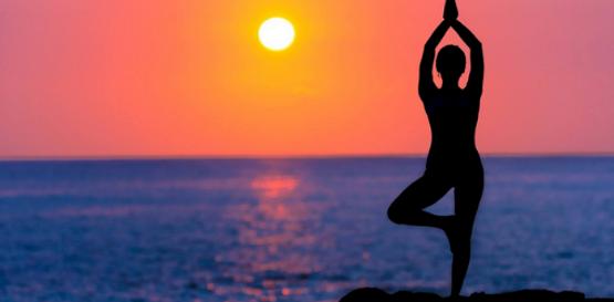 Wellness Resources