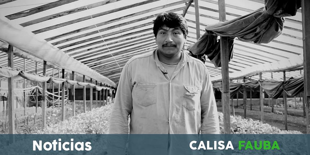 Bernardo Castillo, productor hortícola y floricultor. Unión de Trabajadores de la Tierra.