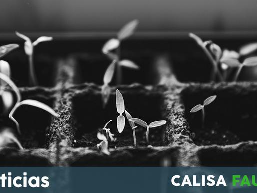 Agroecología en Argentina ¿Todo bien o querés que te cuente?