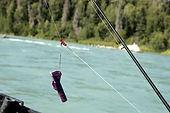 Kenai River Silver Salmon Rig