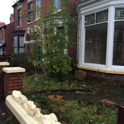 Garden clearance 1