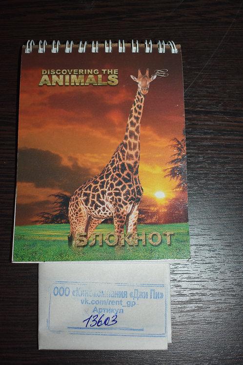 Блокнот с изображением жирафа DiSCOVERiNG THE ANiMALS