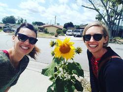 Sunflower power! #sunflower #gardennativ