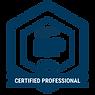 ICAgile__Agile Professional.png