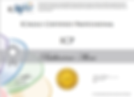 Сертификат IC Agile.png
