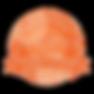 Scrum%20Alliance_-CSPO_edited.png