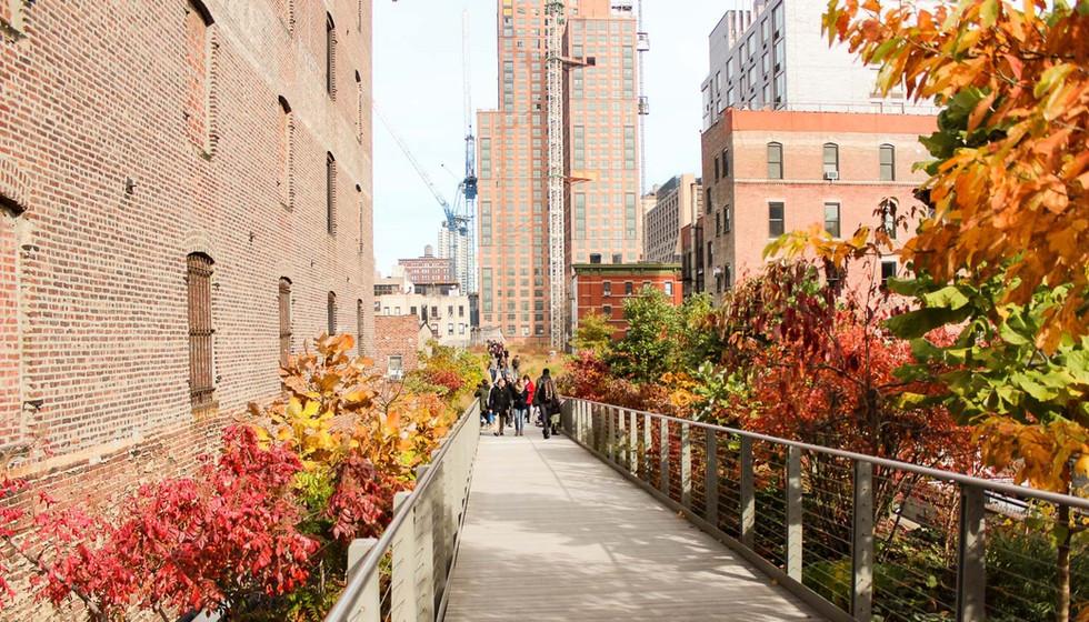 Highline: um jardim suspenso em Nova York