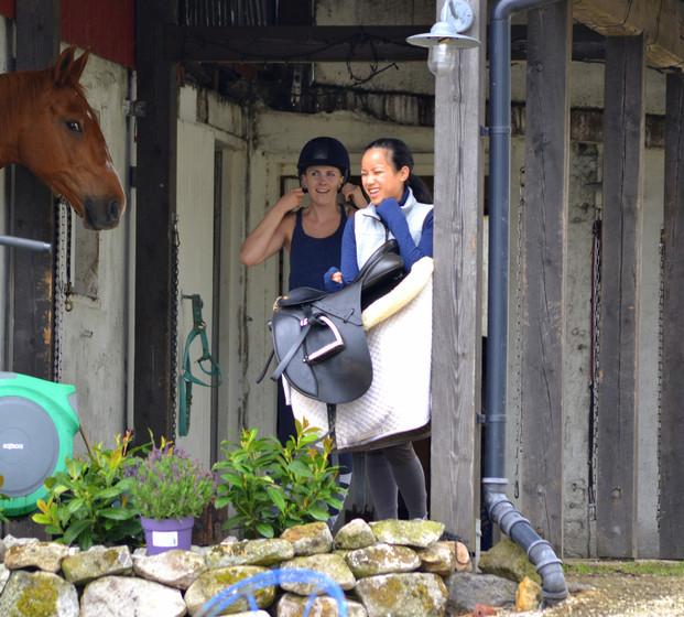 Trivsel for hester og folk