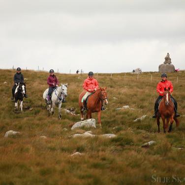 Steinkjerringa - flott opplevelse til hest
