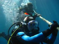 underwater-2141072_1920.jpg
