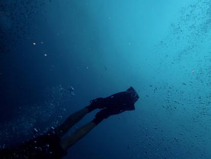 diver-1850255_1920.jpg