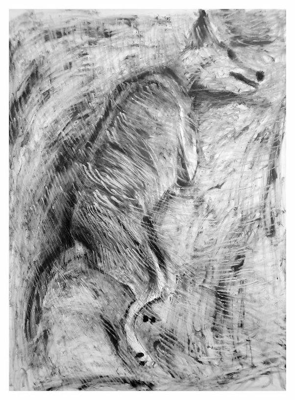 Drawing of older dog by JenniferO'Brien