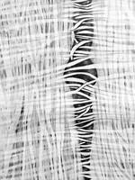 Cocooning, (Detail ) by Jennifer O'Brien