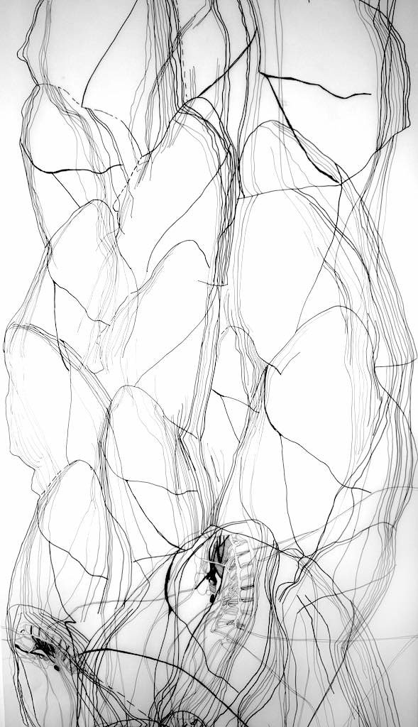 Collective Breathing (detail), drawing i