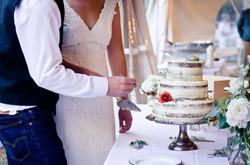 Naked Mountain Wedding Cake
