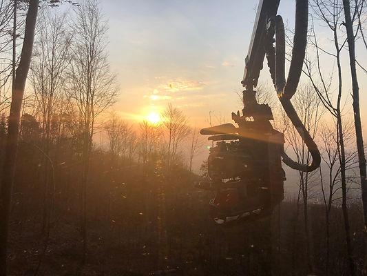 Holztrans Dienstleister für die Forstwirtschaft seit 1986
