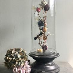 Rêverie de fleurs séchées et d'insectes colorés (libellules, bourdon bleu et araignée)
