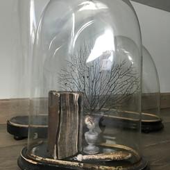 Globes disponibles pour des créations sur mesures selon vos envies