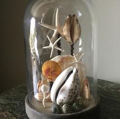 Petit globe maritime ensemble de divers coquillages, de perles et d'étoiles de mer Modèle vendu