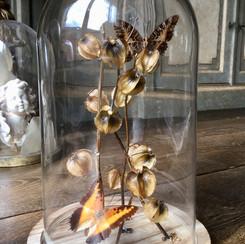 Ensemble de  papillons et de cages d'amour séchées, le tout rehaussé de strass Swarowski Modèle disponible, prix sur demande