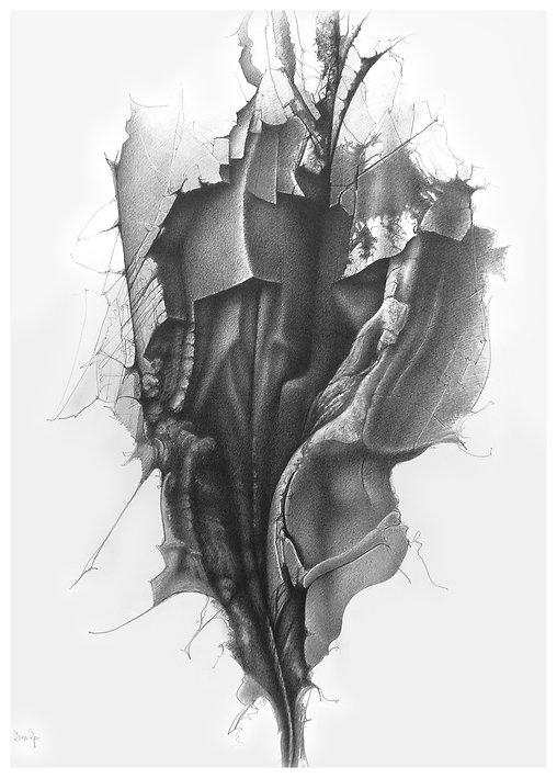 6 Anatomy of a Rock face  57x75cm £2500.jpg