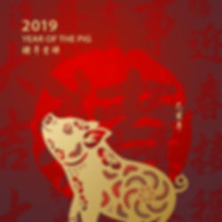 cny-year-of-the-pig-5c06b34d46e0fb0001b5