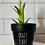 Thumbnail: Black Clay Plant Pots