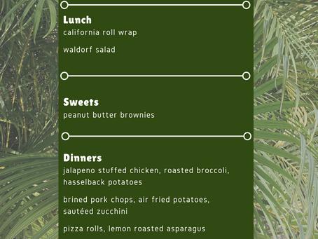Week 9 Meal Plan