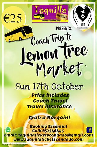 lemon tree new.jpg