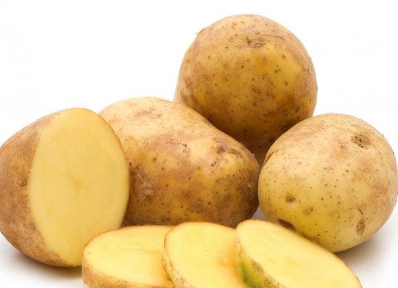 Irish patato