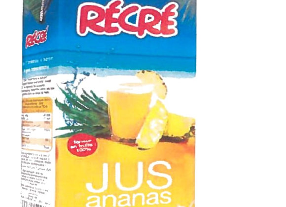 Pineapple Anana 100% RECRE