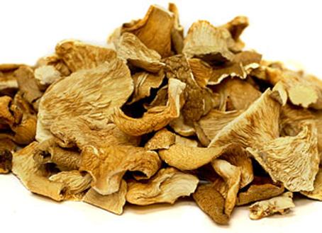 Dried Organic Phoenix Oyster Mushrooms (Local)