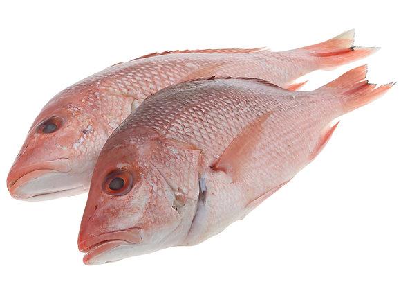 Pot Fish