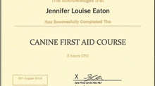 First Aid Certified!