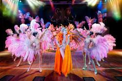 Cabaret Shows