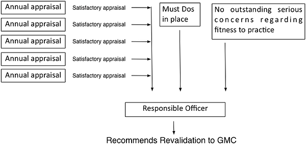 Routine revalidation cycle.png