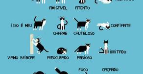 A linguagem corporal dos gatos!