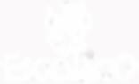 logo esodiaco, marchio esodiaco, esodiaco, esodiaco negozio, esodiaco sexy shop, esodiaco via pietro moscatello, sexy shop palermo, Esodiaco Chimenti Concetta domenica, drago esodiaco, draghetto esodiaco, simbolo esodiaco, un modo diverso di pensare