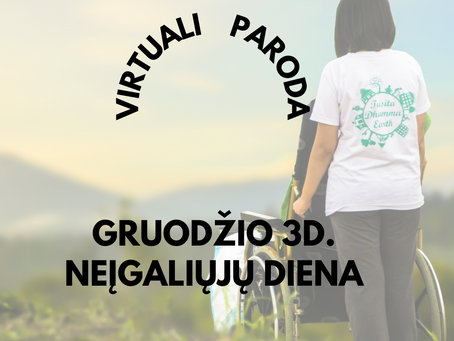 VIRTUALI PARODA