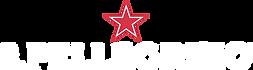 logo-spellegrino-2x.png