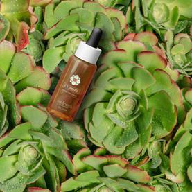 Wellness essential oil packaging design
