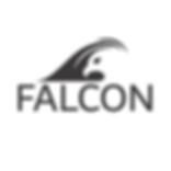 Falcon RIBs UK