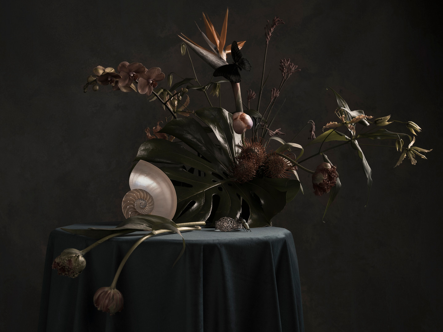Exotic Luxury 2021, ©Ilona Langbroek.jpg