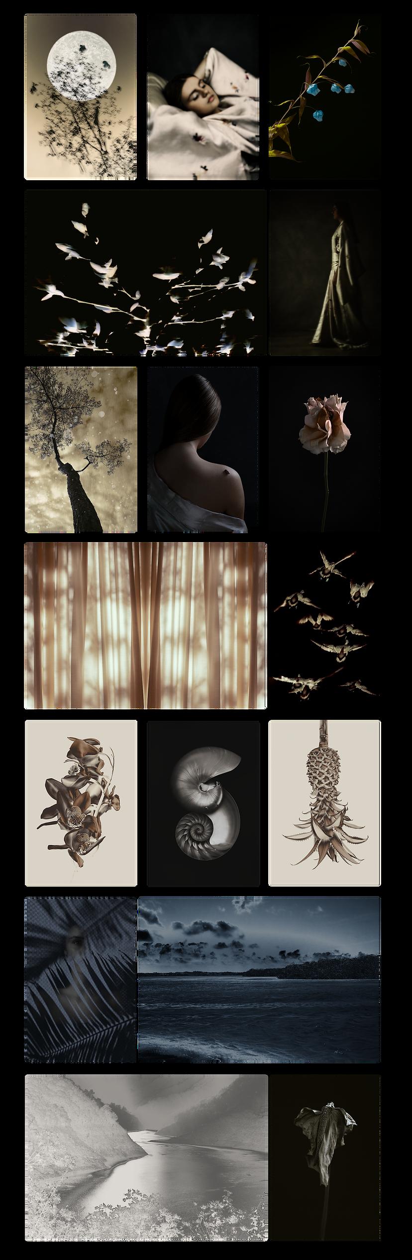 Gallery Ilona Langbroek.png
