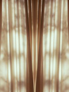 Shadow and Light, 2019 ©Ilona Langbroek