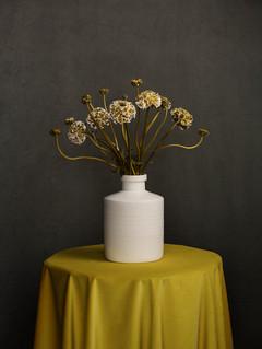 Ranunculus in white vase, 2021 ©Ilona Langbroek