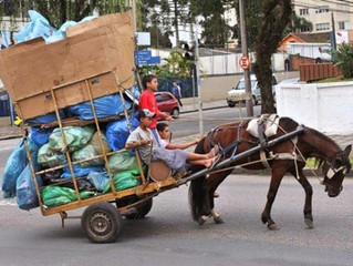 Disciplina o tráfego de veículos de tração animal e dá outras providências. Fortaleza.