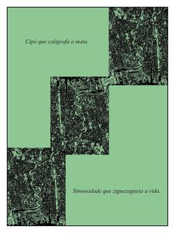 Ciclos, 2011, 84X63 cm